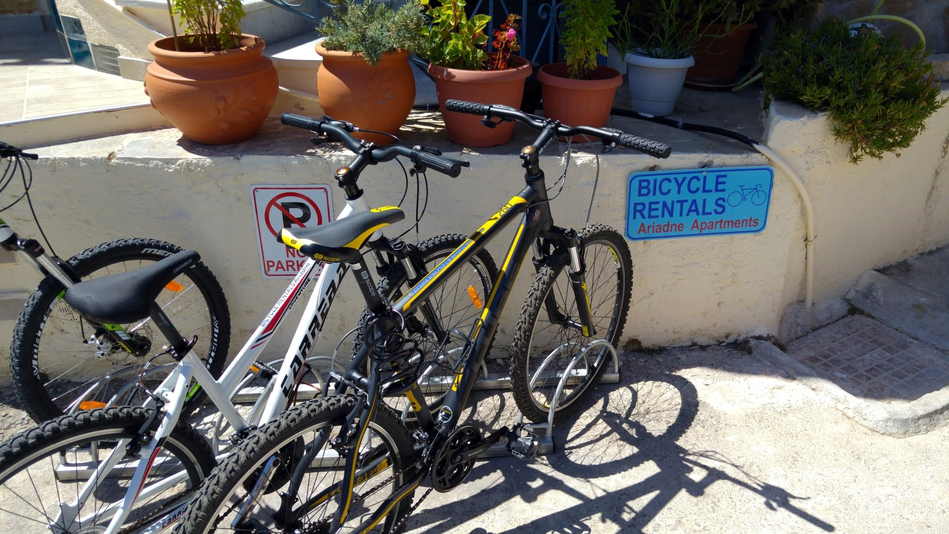 Entdecken Sie Kreta Mit Dem Fahrrad Ariadne Apartments